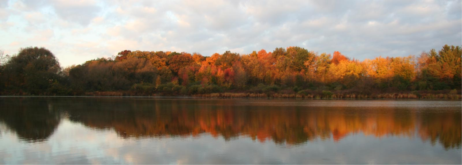 Camp Woodbury view of forest from lake in the Fall